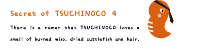 Secret of TSUCHINOCO 4. There is a rumor that TSUCHINOCO loves a smell of burned miso, dried cuttlefish and hair.